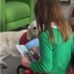 Child reading a book to a golden, Lucy.