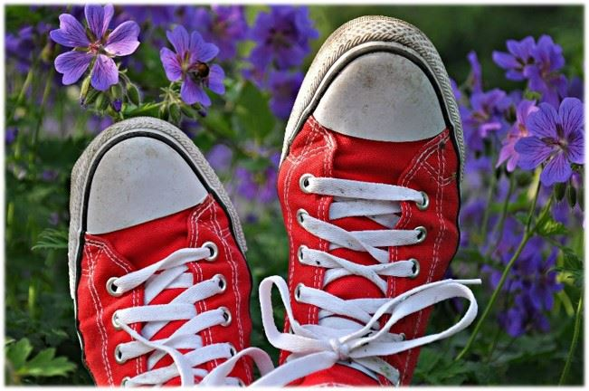 red tennis shoes and flowers